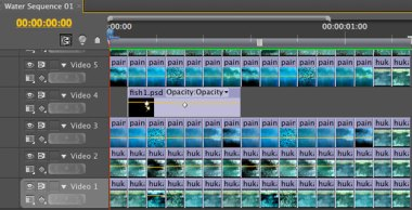 Screen shot from Adobe Premiere Pro project